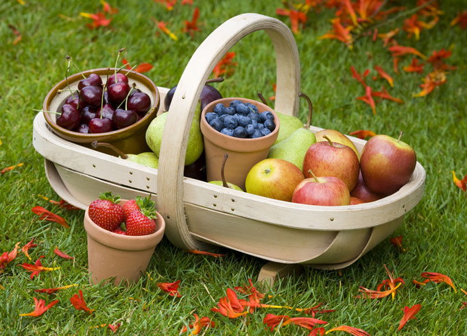 Burgon and Ball Traditional Wooden Trug