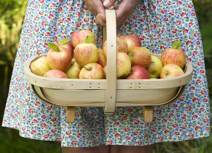 Burgon and Ball Traditional Wooden Trug Basket