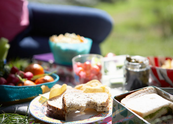 Hosting The Perfect Family Picnic