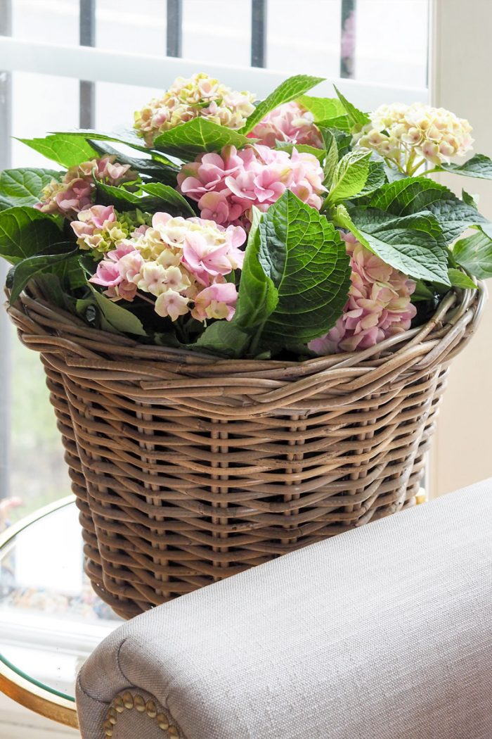 Grey & Buff Rattan Planter