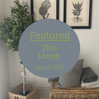 Featured This Month March
