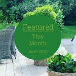 Featured This Month - The House Build