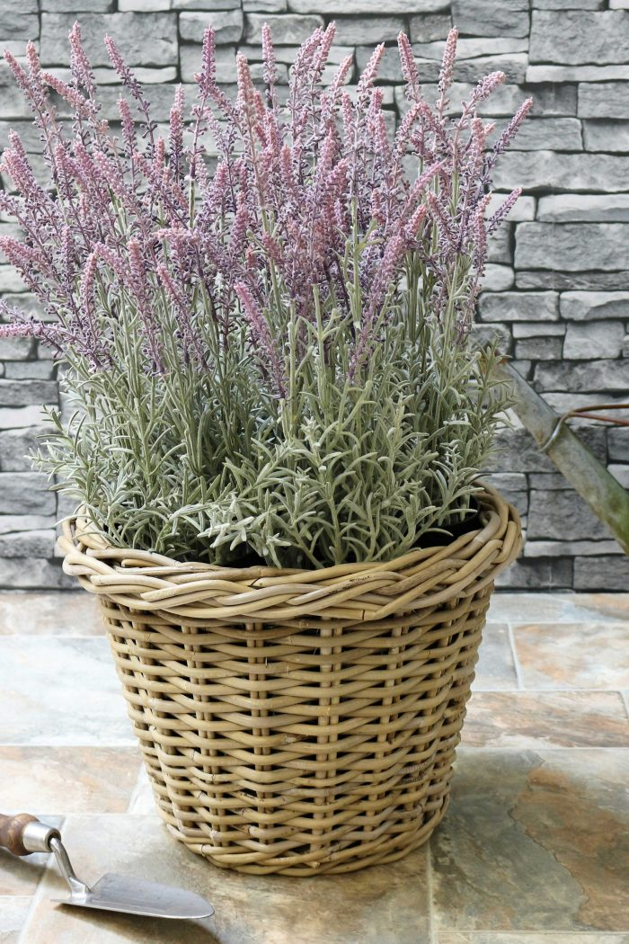 Grey & Buff Rattan Round Tapered Plant Pot