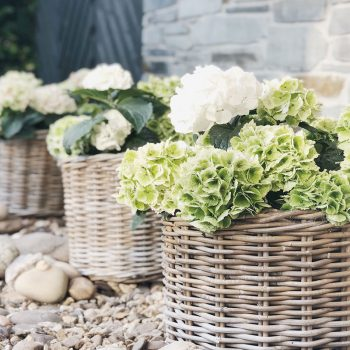Rustic Accessories for a showstopping garden